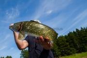 <h5>Hauki ja kalamies</h5><p>Hauki rimpuilee kalamiehen käsissä. Tunnus: img_0981</p>