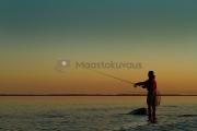 <h5>Mies heittää uistinta auringonlaskun aikaan</h5><p>Mies tavoittelee saalista juuri auringon laskettua. Tunnus: img_8298</p>