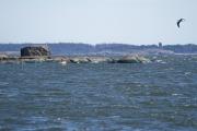 <h5>Meri Helsingissä</h5><p>Purjehdusmatkalla Lauttasaaresta otettu kuva keväisestä saaristosta. Helsinki ja meri ovat yhtä. Tunnus: img_2017</p>
