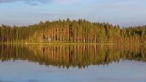<h5>Tyyni järvi</h5><p>Ilta-aurinko hellii pohjois-karjalalaista metsäkumparetta. Tunnus: img_0046</p>