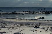 <h5>Jäinen ranta</h5><p>Keväinen merenranta kylmän yön jälkeen. Tunnus: img_7394</p>