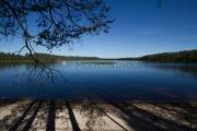 <h5>Järven ranta</h5><p>Luonnon hiekkaranta kirkasvetisen järven kupeessa. Tunnus: img_2984</p>