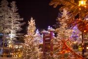 <h5>Joulumaan joukukuuset</h5><p>Joulumaassa Rovaniemellä. Tunnus: img_5138</p>