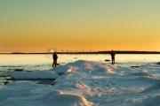 <h5>Miehet kalastavat</h5><p>Meritaimen tulee rantamataliin auringonlaskun aikaan. Tunnus: img_8279</p>