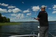 <h5>Kesäkalastus</h5><p>Mies tavoittelee haukea kaislikon vierestä. Tunnus: img_8990</p>