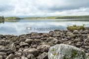 <h5>Kivikkoinen ranta</h5><p>Karu järvi Pohjois-Karjalassa. Tunnus: img_1108</p>