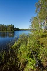 <h5>Korpimaasto</h5><p>Erämainen järvi Pohjois-Karjalassa. Tunnus: img_2957</p>