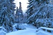 <h5>Luminen kävelytie Oulussa</h5><p>Sininen jouluaattona Oulujoen varrella olevassa puistossa. Tunnus: img_5161</p>
