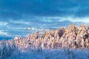 <h5>Luminen maisema</h5><p>Auringon kajo ottaa lumiseen metsään. Tunnus: img_5187</p>