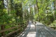 <h5>Luontoretki</h5><p>Pääkaupunkiseudulla Vantaanjoen rannalla kulkee kilometreittäin vehmaita luontopolkuja. Tunnus: img9606</p>
