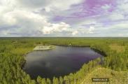 <h5>Ilmakuvat metsästä ja järvestä</h5><p>Ilmakuvat sopivat loistavasti metsän tai järvenrantojen palstojen arviointiin.</p>