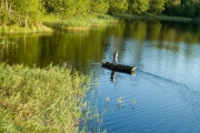 <h5>Mies kalastaa kaislikon edessä</h5><p>Kalamies tavoittelee kaislikossa lymyävää haukea. Tunnus: img_0803</p>