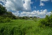 <h5>Vantaanjokivarren niityt</h5><p>Vantaanjoen varrella on vehmasta niittymaisemaa. Tunnus: img_8623</p>