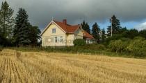 <h5>Maatalo pellon äärellä</h5><p>Maalaiskartano juuri puidun pellon vieressä Tammisaaressa. Tunnus: img_5074</p>