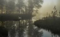 <h5>Ruska ja metsäpuro</h5><p>Varhaisena aamuna erään Pohjois-Karjalassa olevan puron maisema näytti tältä. Tunnus: img_4304</p>