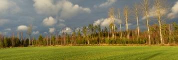 <h5>Syksyinen peltomaisema</h5><p>Panoramakuva, jossa on voimakkaat sadepilvien aiheuttamat kontrastit. Tunnus: pelto_maisema</p>