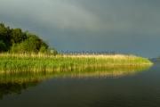<h5>Sadepilvet saapuvat</h5><p>Auringon viimeiset säteet valaisevat kaislikon ennen kuin sadepilvet maalaavat taivaan. Tunnus: img_9024</p>