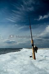 <h5>Virveli</h5><p>Rannalta kalastusta Gotlannin kevätauringon alla. Tunnus: img_8252</p>
